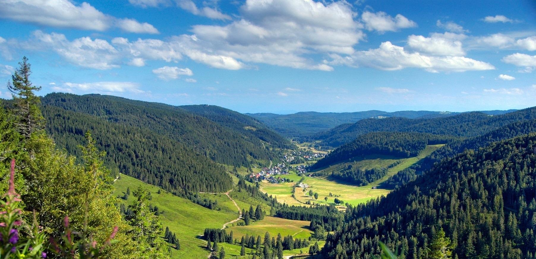 Personalvermittlung-Schwarzwald.jpg